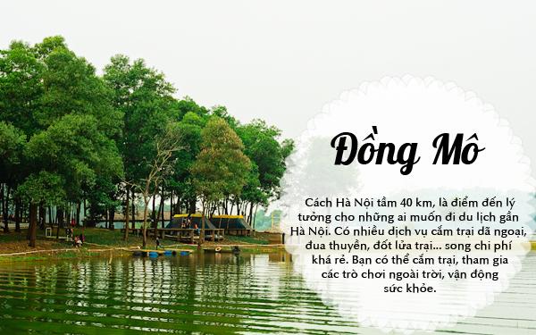 thue-xe-45-cho-di-dong-mo