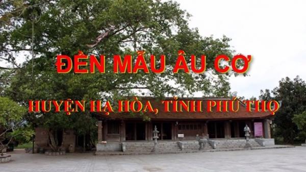 thue-xe-45-cho-di-den-mau-au-co