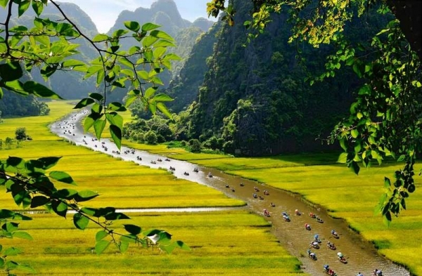 Tam-coc-Ninh Bình